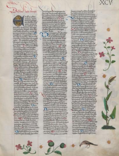 Deutsche Sprache Und Literatur
